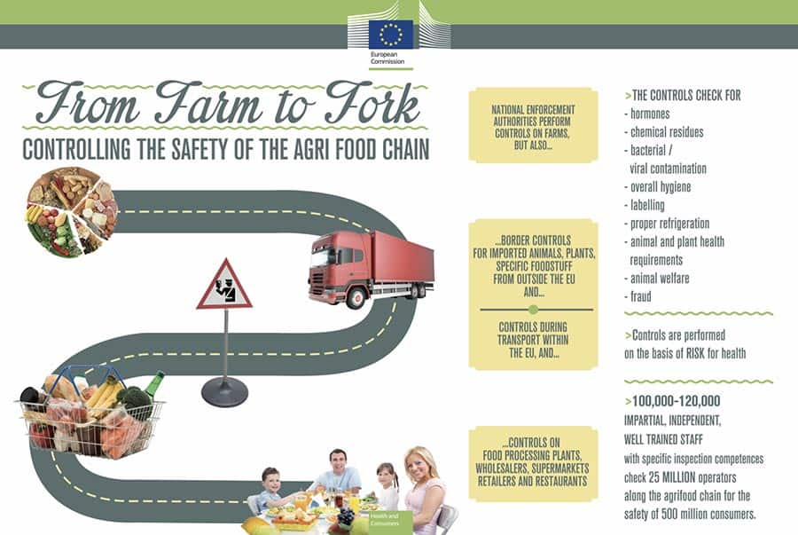 Infographic with a road illustration and food