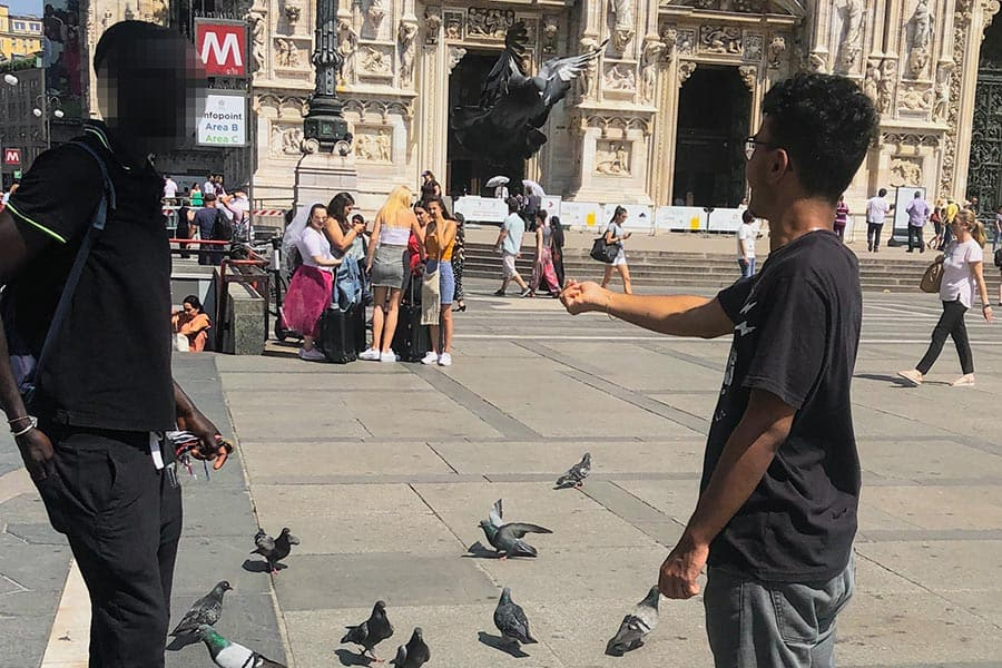 Young men feeding pigeons in the streets of Milan
